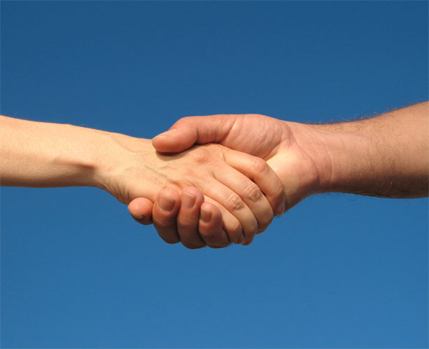 Contact Form SHAKEHANDS